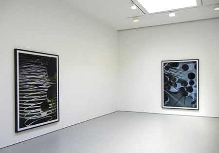 Thomas Ruff's photograms at Zwirner gallery, Spring 2013.